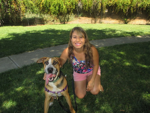 East Bay dog rescue